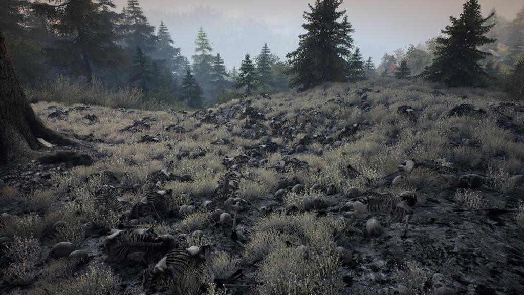 skull field
