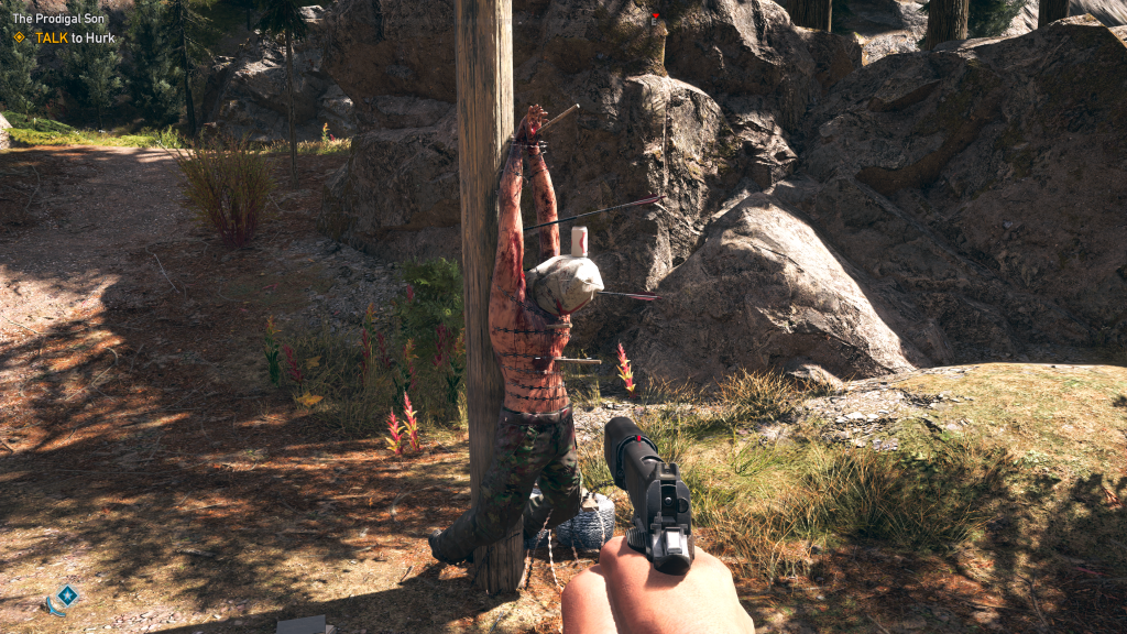 Far Cry 5 accupuncture