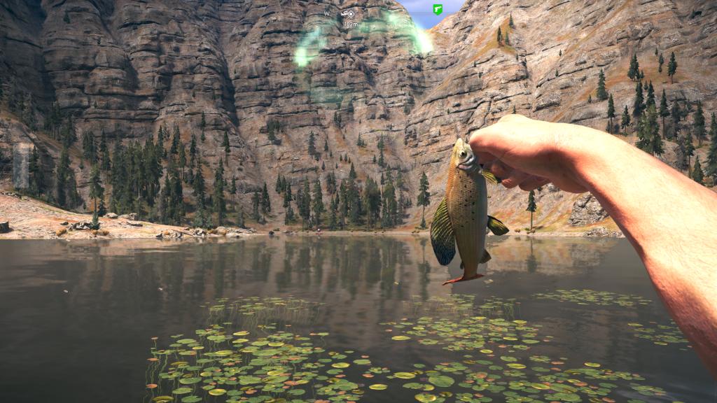 Far 5 fish