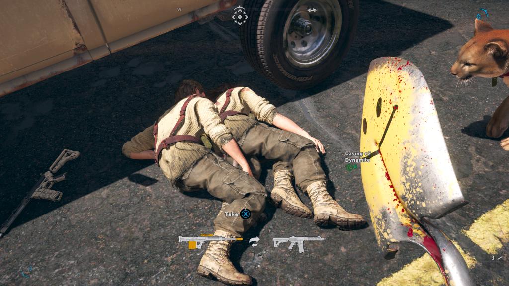 Far Cry 5 twins 2
