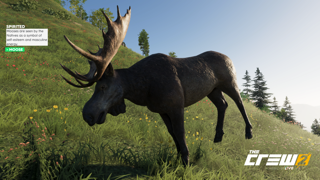 The Crew 2 majestic moose